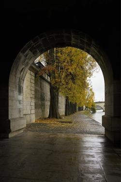 Autumn in Paris by Moises Levy