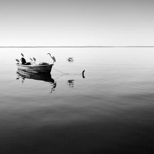Boat and Heron II by Moises Levy