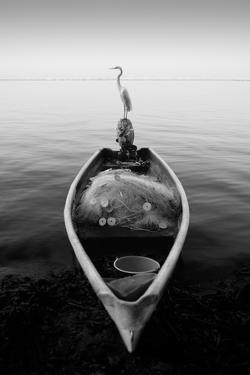 Canoe And A Heron by Moises Levy