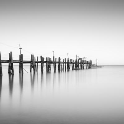 China Camp Pano BW 2 of 3 by Moises Levy