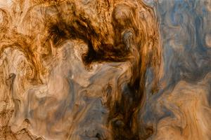 Ephemeral Beauty-12 by Moises Levy