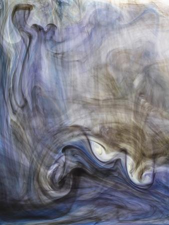 Ephemeral Beauty-2 by Moises Levy