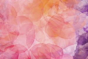 Flores Compuestas 1 by Moises Levy
