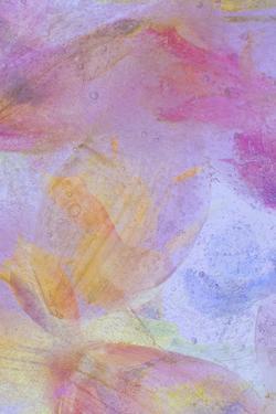 Flores en Hielo Compo 3 by Moises Levy