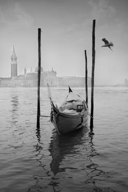 Gondola Y Gaviota by Moises Levy