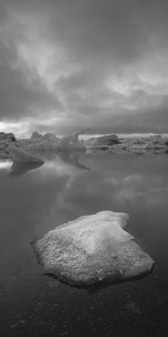 Icebergs 1 Vertical B&W by Moises Levy