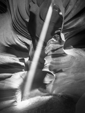 Illumination II by Moises Levy