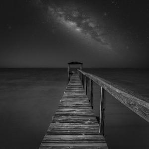 Milky Way in Florida 2 by Moises Levy
