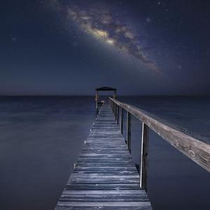 Milky Way in Florida by Moises Levy
