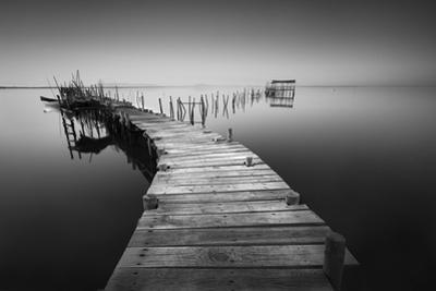 My way 5 by Moises Levy