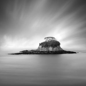 Rat Island 2 by Moises Levy