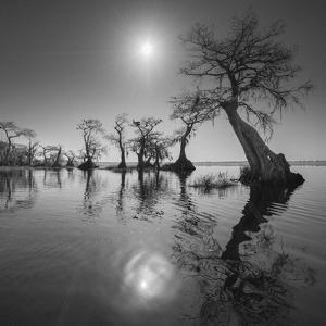 Sunrise 2 by Moises Levy