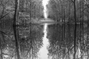 Suwanne Reflection Pano - BW by Moises Levy