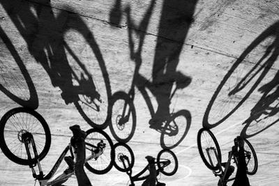 Tropical Shadows-26 by Moises Levy
