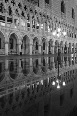 Venetia Reflection by Moises Levy