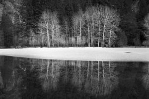 Yosemite Reflection 1 by Moises Levy