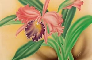 Pink Cattleya Orchid by Moki Hana