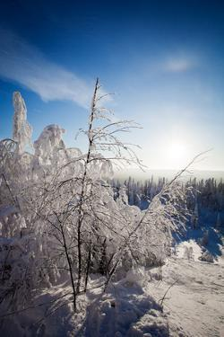Lapland Finland by Molka
