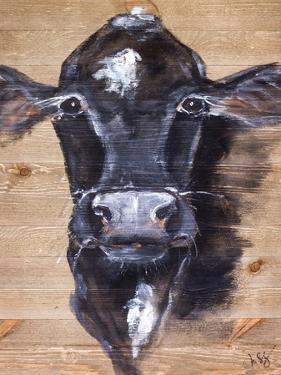 Black Cow by Molly Susan