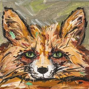 Fox by Molly Susan