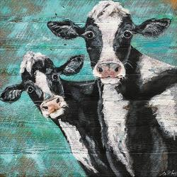Affordable Cow Posters for sale at AllPosters com