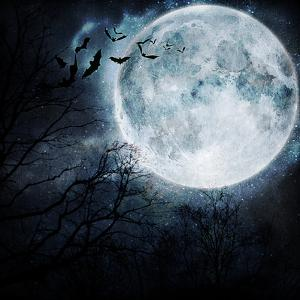 Halloween Background. Bats Flying in the Night with a Full Moon in the Background. by molodec
