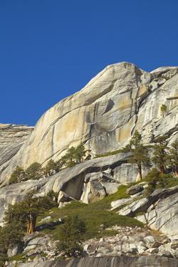 Alpine Wildeness with Exposed Granite Slabs, Boulders, and Juniper Trees, Yosemite National Park, C by Momatiuk - Eastcott