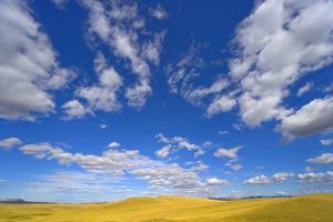 Beautiful Cumulus Clouds and Golden Prairie by Momatiuk - Eastcott