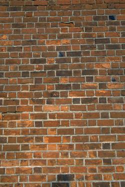 Brick Wall by Momatiuk - Eastcott