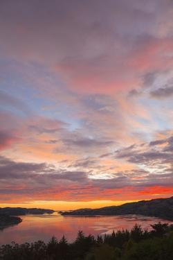Bright Dramatic Clouds at Sunrise, Dunedin, New Zealand by Momatiuk - Eastcott