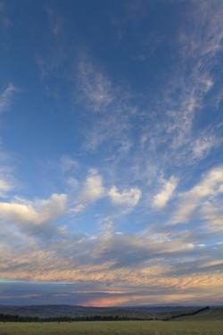Colorful Clouds in Blue Sky, Fall Evening, South Island, New Zealand by Momatiuk - Eastcott