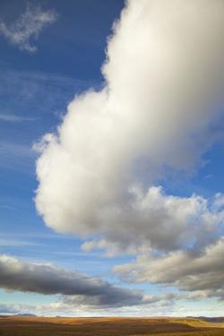 Cumulus Clouds above Tundra in Yukon Territory by Momatiuk - Eastcott