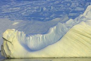 Wiggins Glacier Descending into Sea by Momatiuk - Eastcott