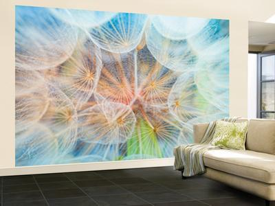 Moments Of Lightness Wallpaper Mural