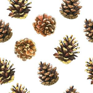 Seamless Floral Pattern on a White with Pinecone. Festive Christmas Background with Watercolor Real by Monash