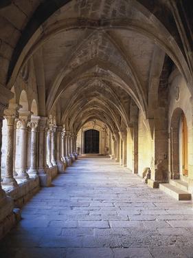 Monastery of Santa María De Vallbona