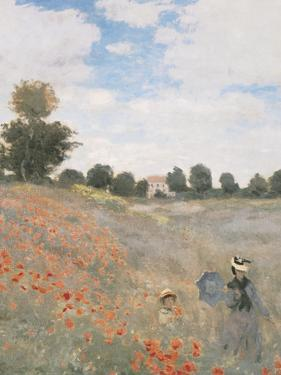 The Poppyfield, Near Argenteuil - Focus by Monet Claude