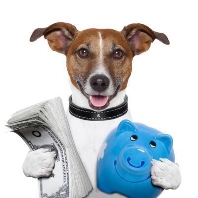 https://imgc.allpostersimages.com/img/posters/money-dog_u-L-Q1039B80.jpg?p=0