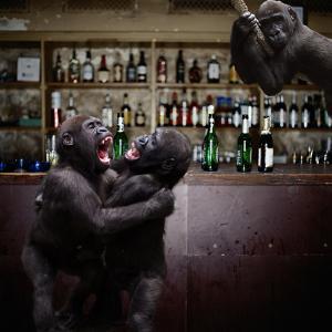 Monkey Bar (Drunk Monkeys) Art Poster Print