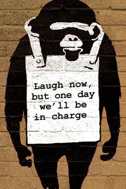 Monkey Laugh Now