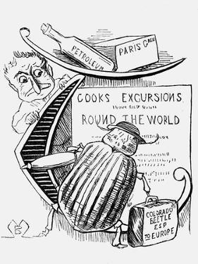 The Great Beetle Panic, 1877 by Montagu Blatchford