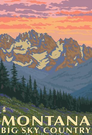 Montana - Big Sky Country - Spring Flowers, c.2008