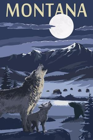 https://imgc.allpostersimages.com/img/posters/montana-valley-scene-at-night-with-wolves_u-L-Q1GQTBI0.jpg?artPerspective=n