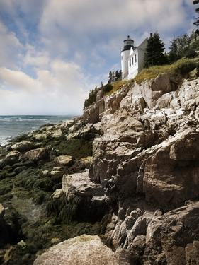 Bass Harbor Head Lighthouse & Foothill by Monte Nagler