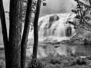 Bond Falls & Trees by Monte Nagler