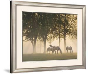 Horses in the Mist by Monte Nagler