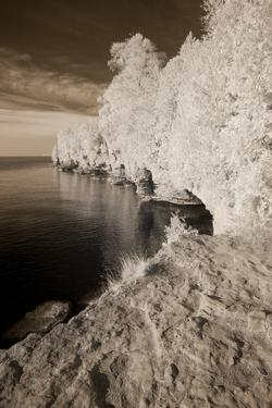 Infared Photography by Monte Nagler