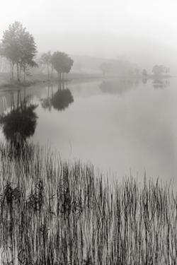 Lakeside Mist by Monte Nagler