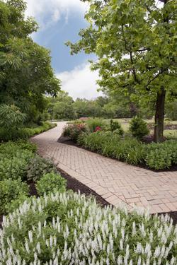 Pathway at Franklin Park, Columbus, Ohio '10 by Monte Nagler