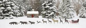 Sleigh in the Snow, Farmington Hills, Michigan '09 by Monte Nagler